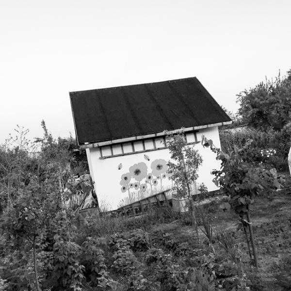 IMG_1271-2